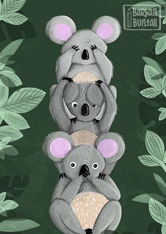 Three wise Koalas